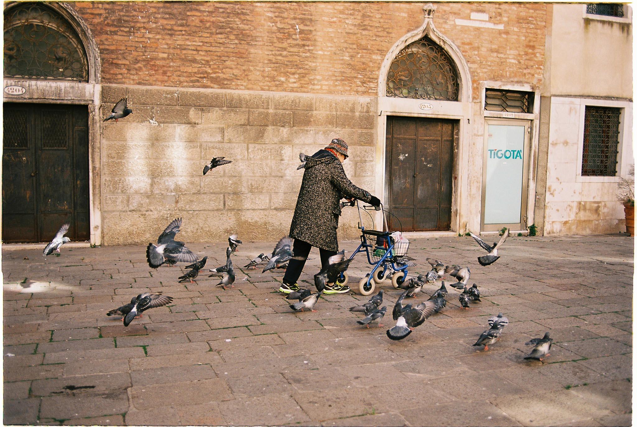 pigeons old grandma feeding pigeons kodak ektar film photography