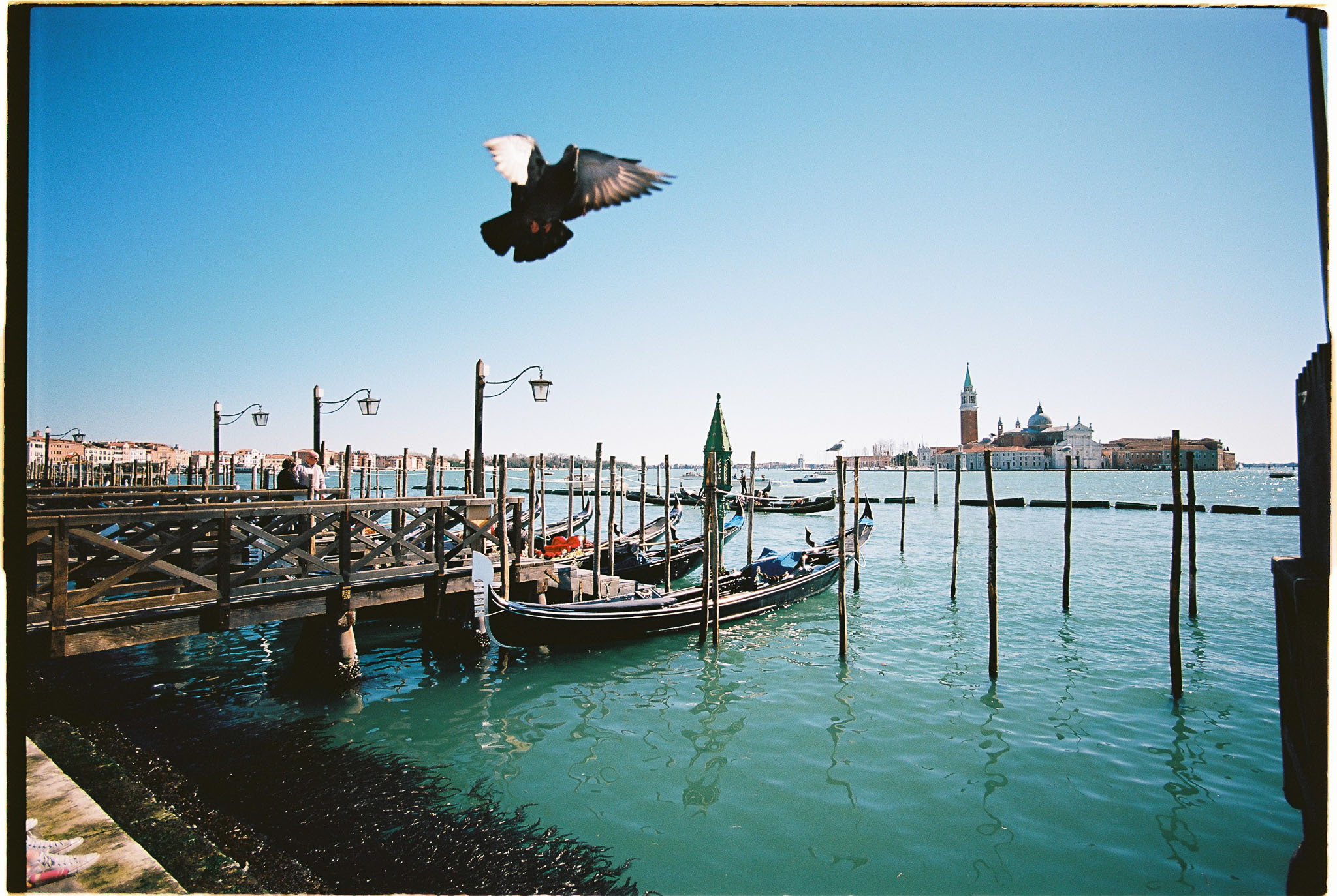 venice port film photography